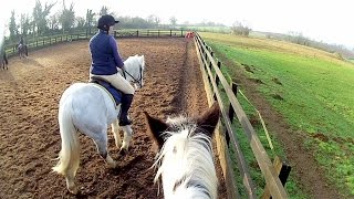 Transitions & Canter Exercises | Helmet Cam