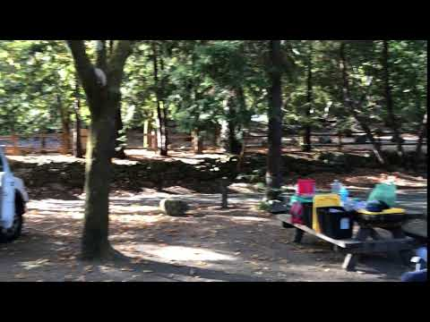 A short tour of our camp site.