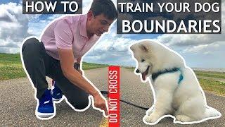 How To Start Teaching Your Dog Boundaries