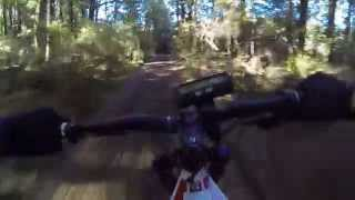 Riding North Track in Rangataua Forest on my Electric Mountain Bike.