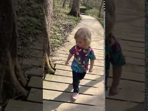 Video Of Nerstrand Big Woods, MN