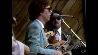 Brown's Ferry Blues -Hot Rize (6/24/79-Qv)