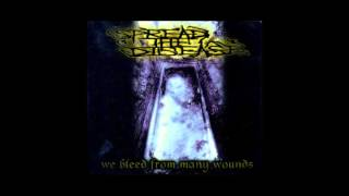 Spread the Disease - We Bleed from Many Wounds