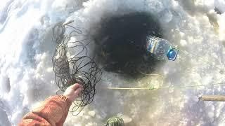 Перемет на зимней рыбалке