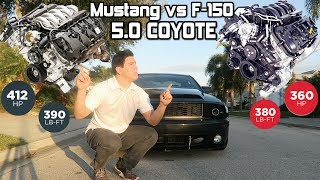 Differences Between a F-150 5.0 and Mustang 5.0 Coyote Engine *Coyote Cousins*