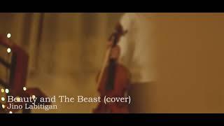 Beauty And The Beast   Jino Labitigan Violin Cover