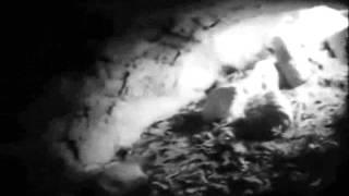Video VICTIMS OF CLASSWAR - homo homini lupus