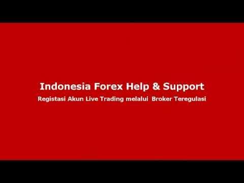 Best ib forex brokers