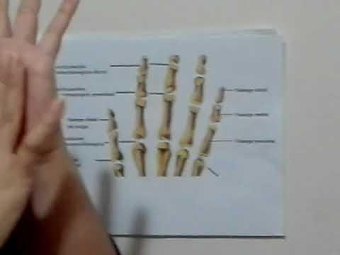 Cirugía artroscópica en el precio articulación del hombro Moscú