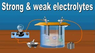 Strong And Weak Electrolytes | 11th Std | Chemistry | Science | CBSE Board | Home Revise