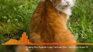 Emang Aku Syantik /nhạc hot trên tiktok -MUSIC PLAYER
