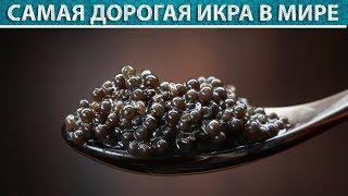 10 советских товаров, которые были популярны за границей