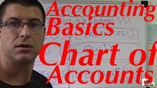 Accounting For Beginners #20 / Chart of Accounts / Assets, Liabilities, Equity, Revenues, Expenses