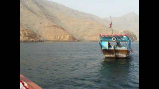 preview picture of video 'Gulf of Oman Khasab Musandam  Dolphins at a Dhow cruise into the fjords'