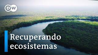 Eco Latinoamérica: el magacín del medioambiente