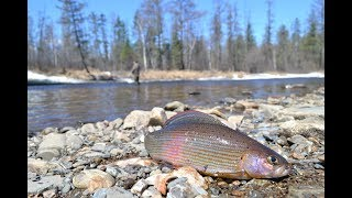 Ловля рыбы дальнего востока и сибири