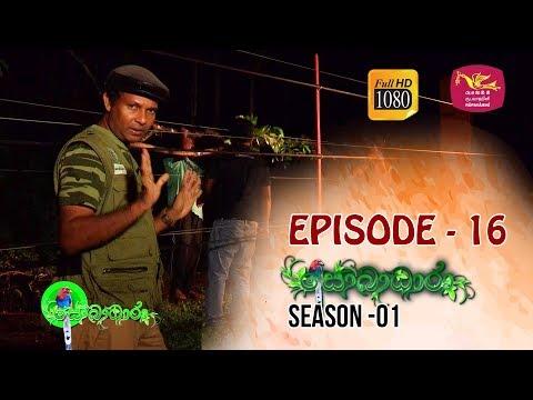 Sobadhara  | Season - 01 | Episode 16 | Sobadhara Rupavahini