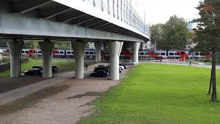 Ласточка поезд едет под поклонногоским мостом
