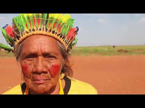 Mulheres Indígenas: Vozes por Direitos e Justiça