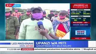 Maskauti wajitolea kupanda miti Samburu