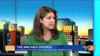 VIDEO: The amicable divorce