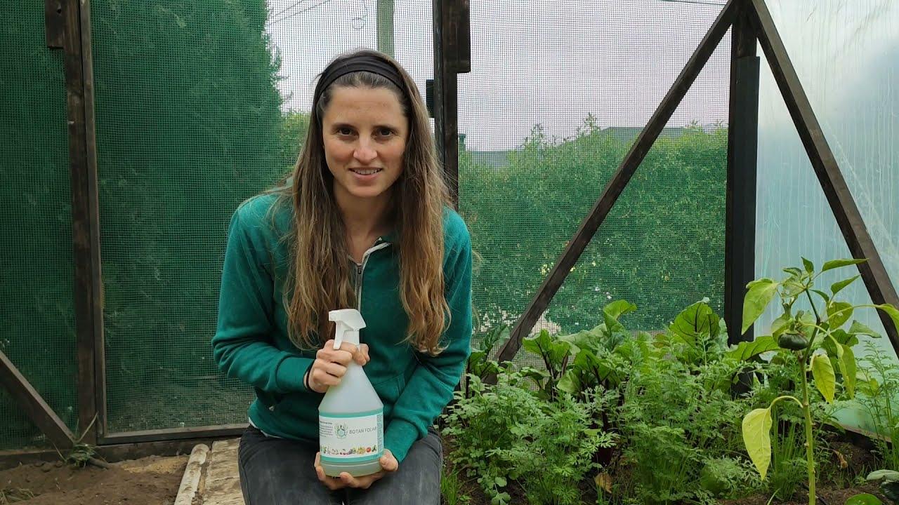 Botan Foliar, antioxidante natural y orgánico para nuestras plantas.