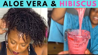 Homemade ALOE VERA Leave In Conditioner For Massive Hair Growth| Infused With Hibiscus