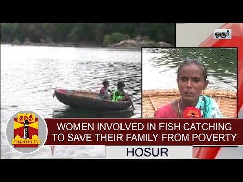 Women-Involved-in-Fish-Catching-to-save-their-Family-from-Poverty-Thanthi-TV