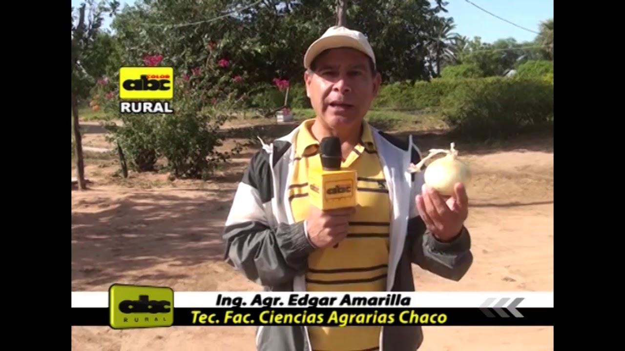 Sistema de riego para el Chaco