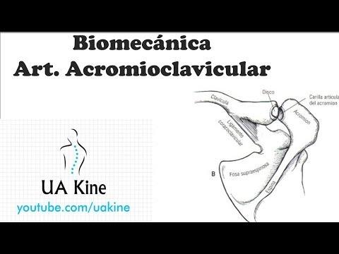 Dolor de espalda con cáncer de pulmón con metástasis etapa 4