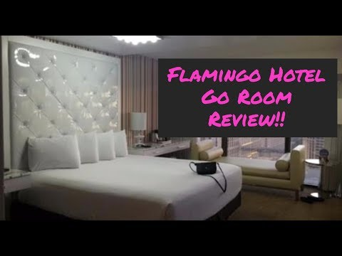 Flamingo Hotel Go Room Review!! Las Vegas