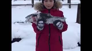 Платная зимняя рыбалка в юдино
