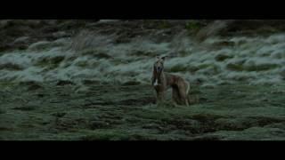 Airklipz - Lurchers [Music Video]