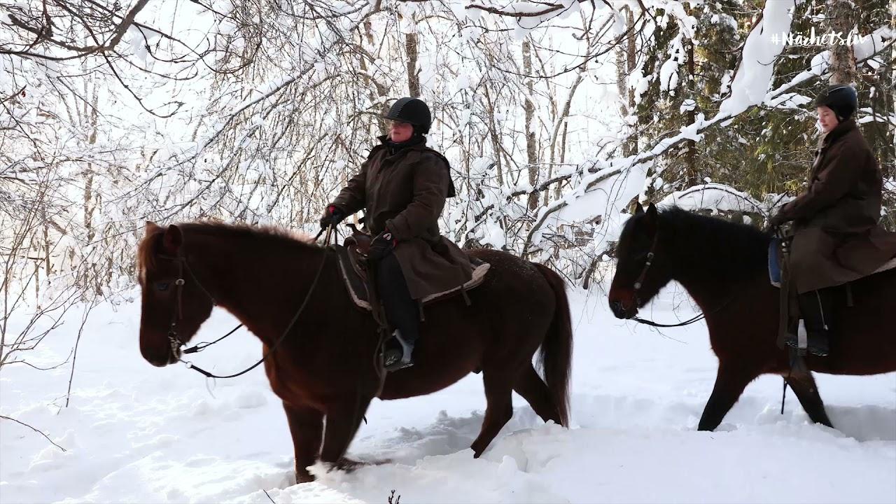 Turridning i vinterlandskap