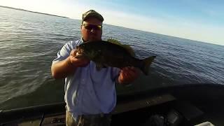 Trolling for Lake Erie Walleye (SURPRISE CATCH)