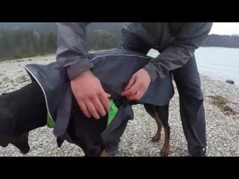 Ruffwear Aira Rain Jacket Regenmantel für Hunde