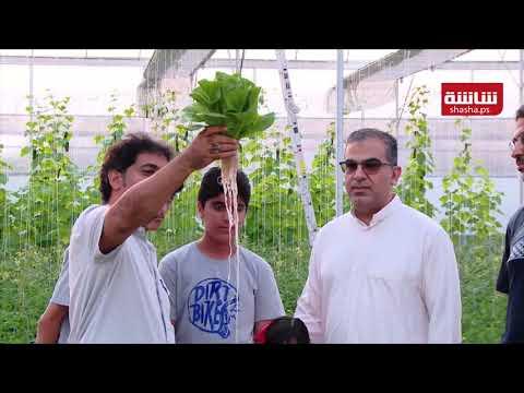 سعودي يستخدم الزراعة المائية لحل مشكلة شح المياه في المملكة