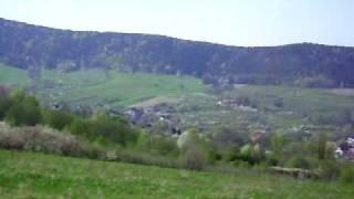 preview picture of video 'Lipka  dzewo  miłosci Myslenice 2'