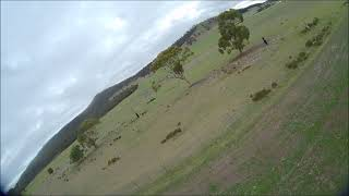 Reptile S800 Sky Shadow wing V1 flown FPV