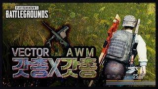 Vector + AWM