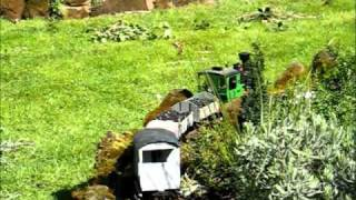 preview picture of video 'Peckforton Garden Railway - March 2008'