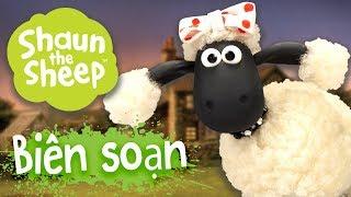 Biên soạn 26-30 [phần 4] - Những Chú Cừu Thông Minh