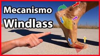Mecanismo Windlass y Biomecánica de Carrera