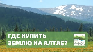 Как я искал и купил землю на Алтае