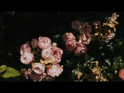 Alexander McQueen SS18 Inspiration Film