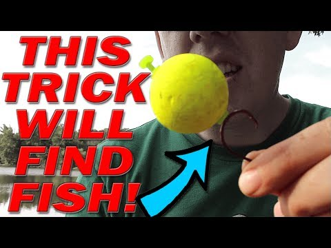 BANK FISHING Trick to finding fish!!!  Catch more fish from shore: catfish, bass, carp