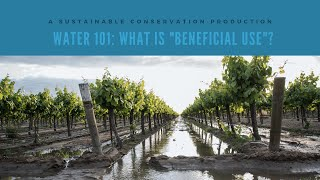 "Water 101: What is ""Beneficial Use""?"