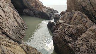 鱼群搁浅四米深大水坑,用四小时抽干后,坑底场景让小伙不淡定了