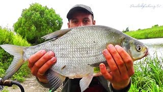 Пахра рыбалка без границ