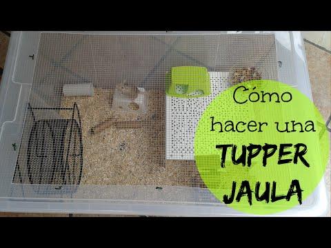 CÓMO HACER UNA TUPPER-JAULA